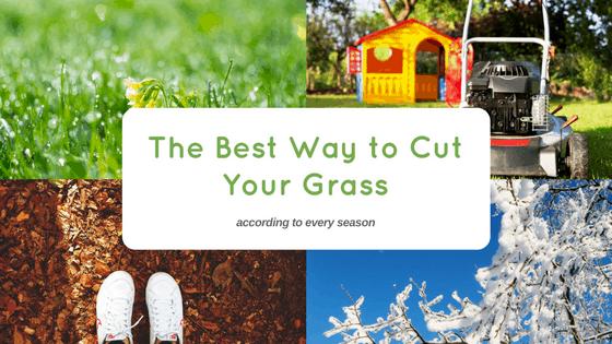best way cut grass